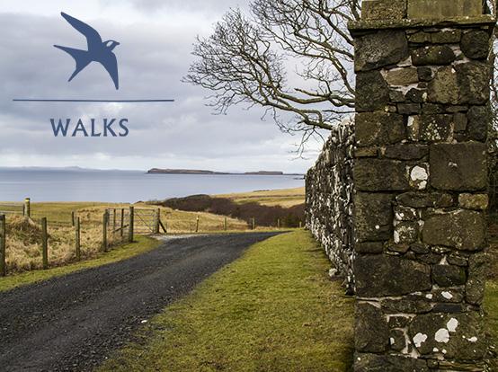 overlaytemplate-walks