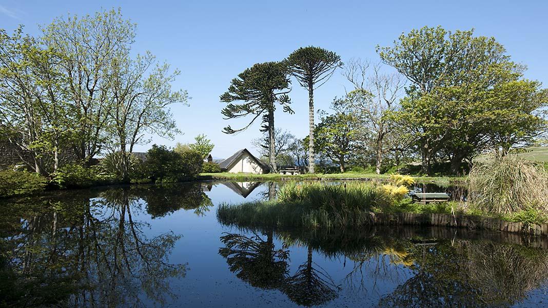 waternish farm pond